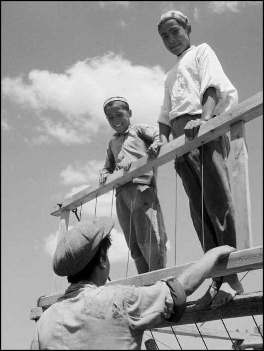 Крымскотатарские мальчики во время сбора урожая на поле, 1943 год