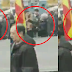 Brutal agresión a una activista de Femen cuando boicoteaba un acto de Falange