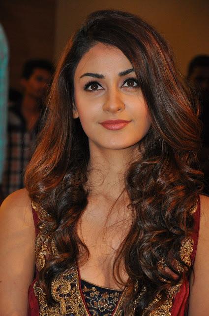 ISM heroine Aditi Arya at Movie Audio launch