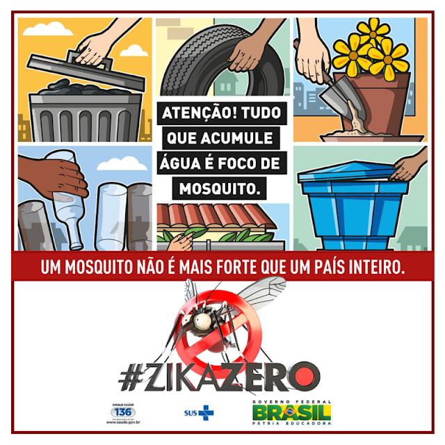 Vírus Zika e as formas de transmissão