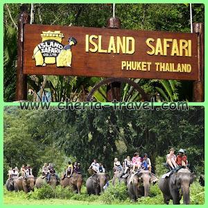 Menjelajah ke Island Safari