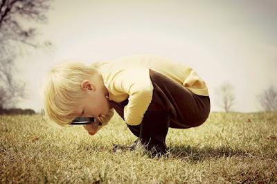 7 Versículos da Bíblia sobre Curiosidade