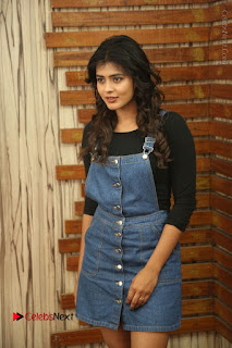 Actress Hebah Patel Stills at Nanna Nenu Naa Boyfriends Movie Interview  0022.JPG