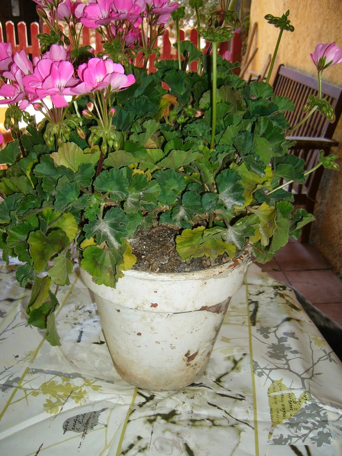 Taburete y tiesto para el jard n hacer bricolaje es for Bricolaje y jardin