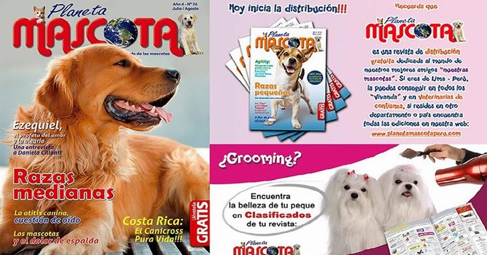 Mundo Teen Lima Peru Planeta Mascota La Primera Revista Dedicada Al Mundo De Las Mascotas