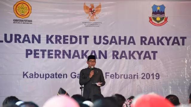 Ridwan Kamil Sarankan UKM Peternakan Akses KUR