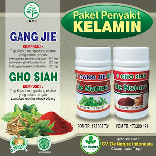Jual Obat Sipilis di Lubuklinggau Sumatera Selatan