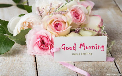 lite pink rose image with good morning for whatsapp