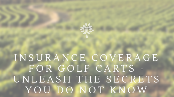 Insurance Coverage For Golf Carts - Unleash The Secrets You Do Not Know
