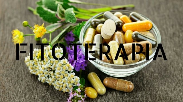 Uso da Fitoterapia para Profissionais