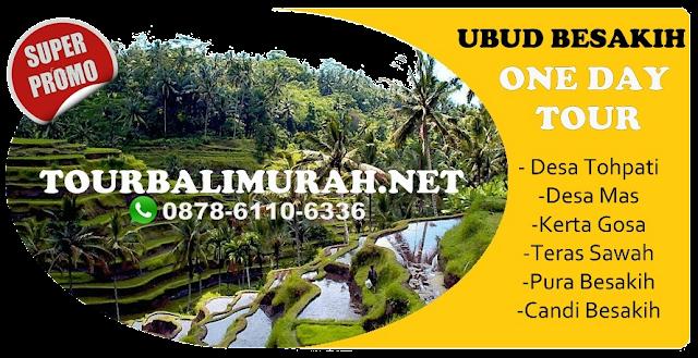paket tour bali murah,Teras sawah bali, Ubud Besakih Tour