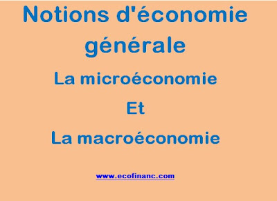 Notions d'économie générale : La microéconomie et la macroéconomie