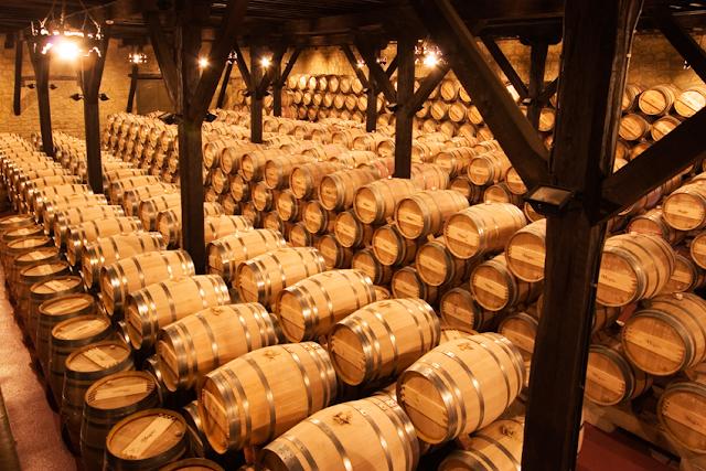 Zonas vinícolas de mundo que merece la pena conocer