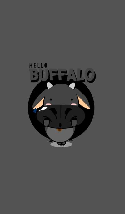 Hello Buffalo