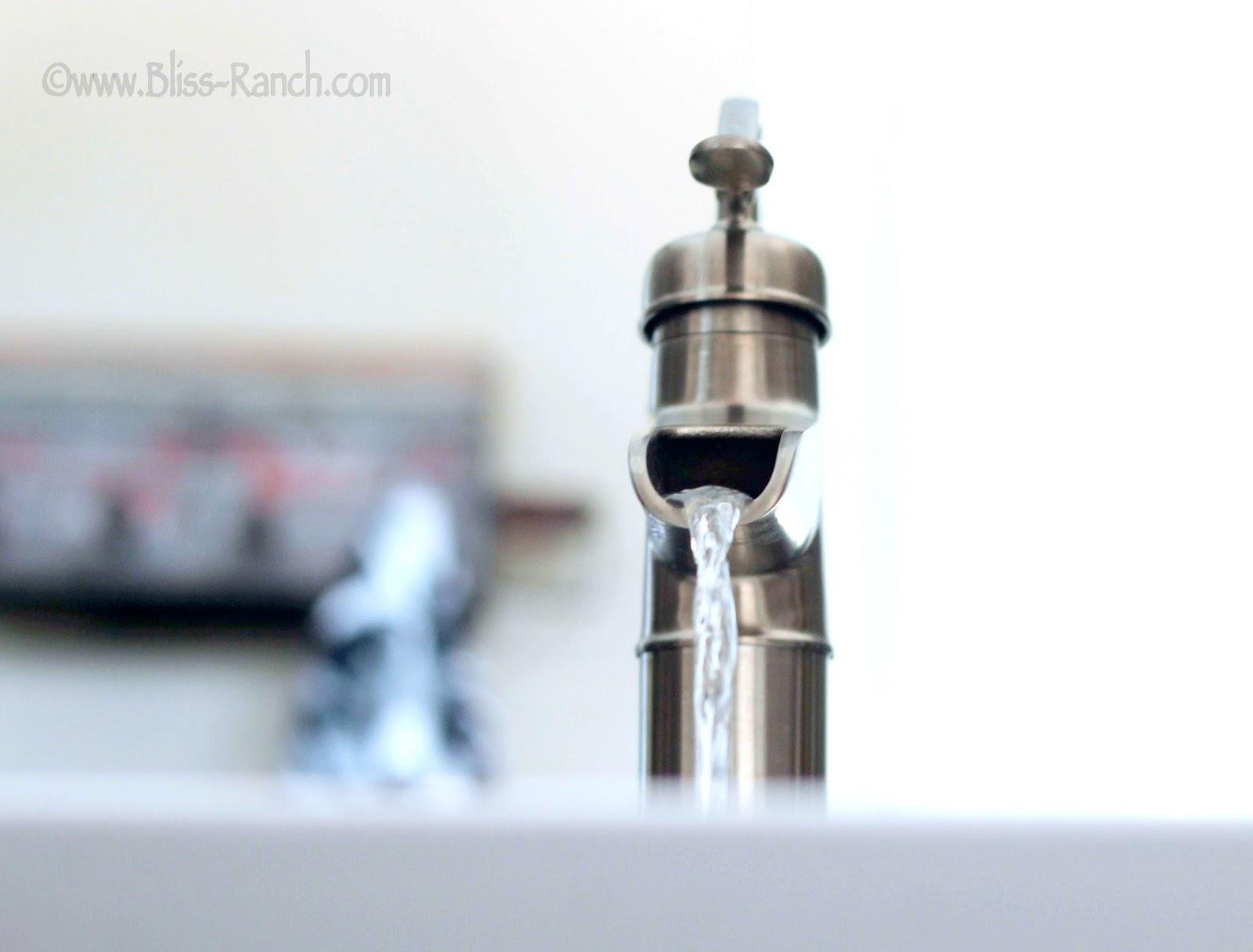 Price Pfister Faucet Bathroom Redo Bliss Ranch.com