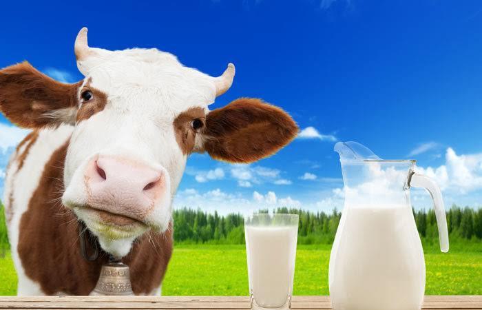 Efek Samping Dan Aturan Minum Susu Prenagen Esensis Untuk Program Kehamilan