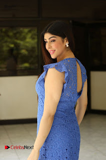 Actress Aditi Singh  Pictures in Short Dress at Movie Interview  0242