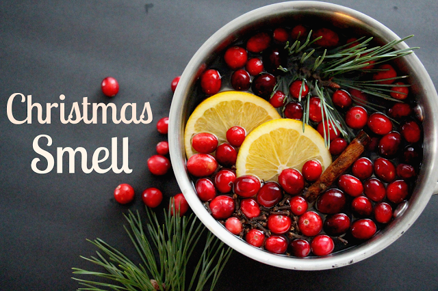 Since we spend so much time indoors during the holidays, Christmas is the perfect time to use your aromatherapy diffuser. Whether you are looking to bring seasonal smells to your home or just ward off seasonal depression, there are so many wonderful essential oils that can help.