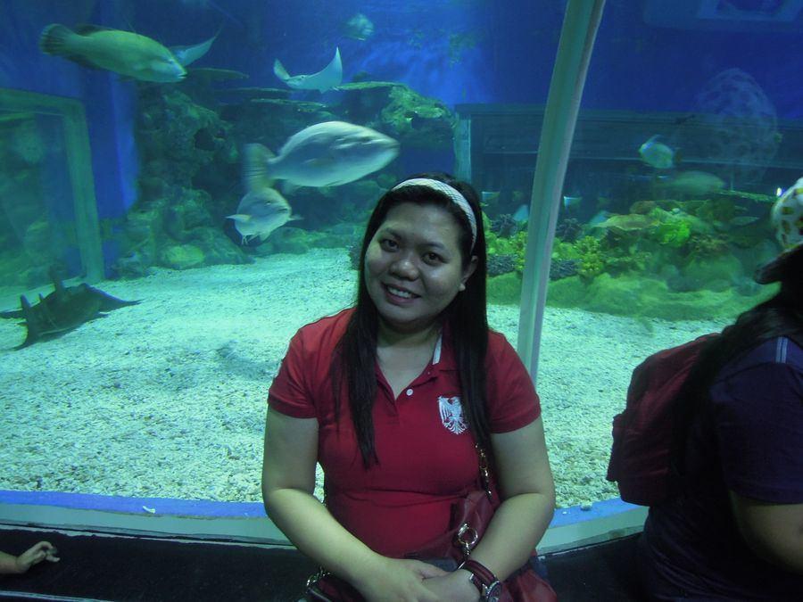 Marvelling at Manila Ocean Park's oceanarium