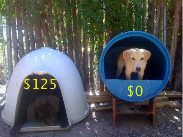 Raising Toot And Roxy Dog House Idea For Cheap