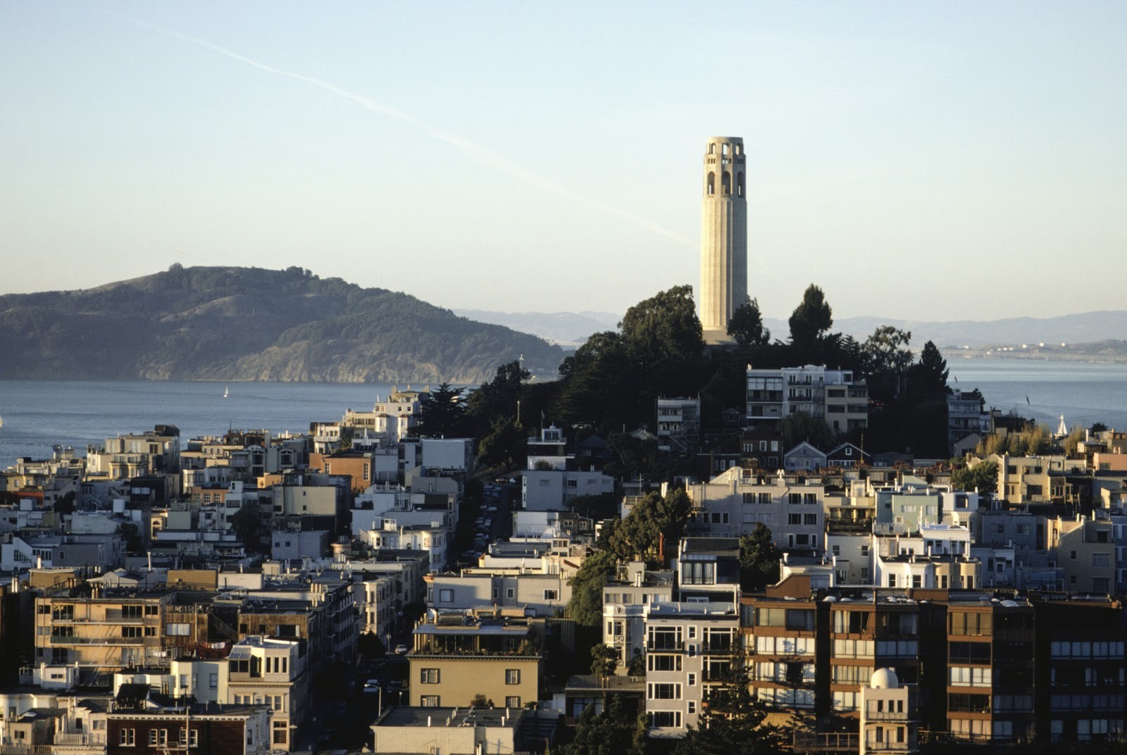 California, San Francisco, Christopher Columbus and Coit ... |Coit Tower Flowers