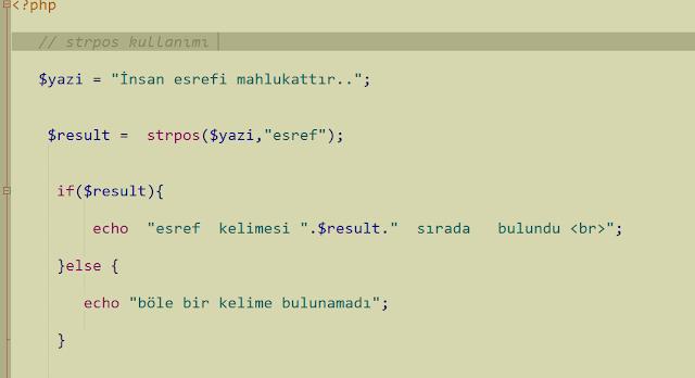 php ile bir string içinde deger arama
