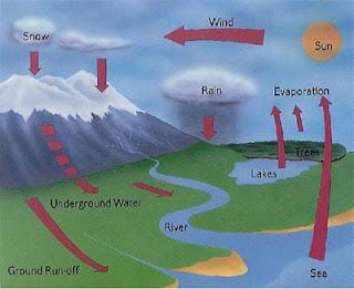 Pengertian Siklus Air dan Tahapan Prosesnya Lengkap