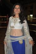isha talwar latest glam pics-thumbnail-7