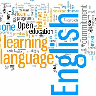 the importance of english language hamaray essays english language