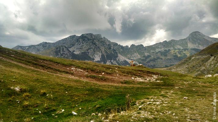 Горы парка Дурмитор, Черногория