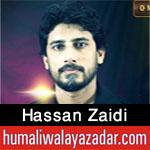 http://www.humaliwalayazadar.com/2016/10/hassan-zaidi-nohay-2017.html