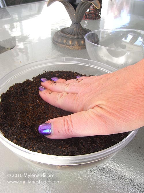 Tamp the soil down with your hand