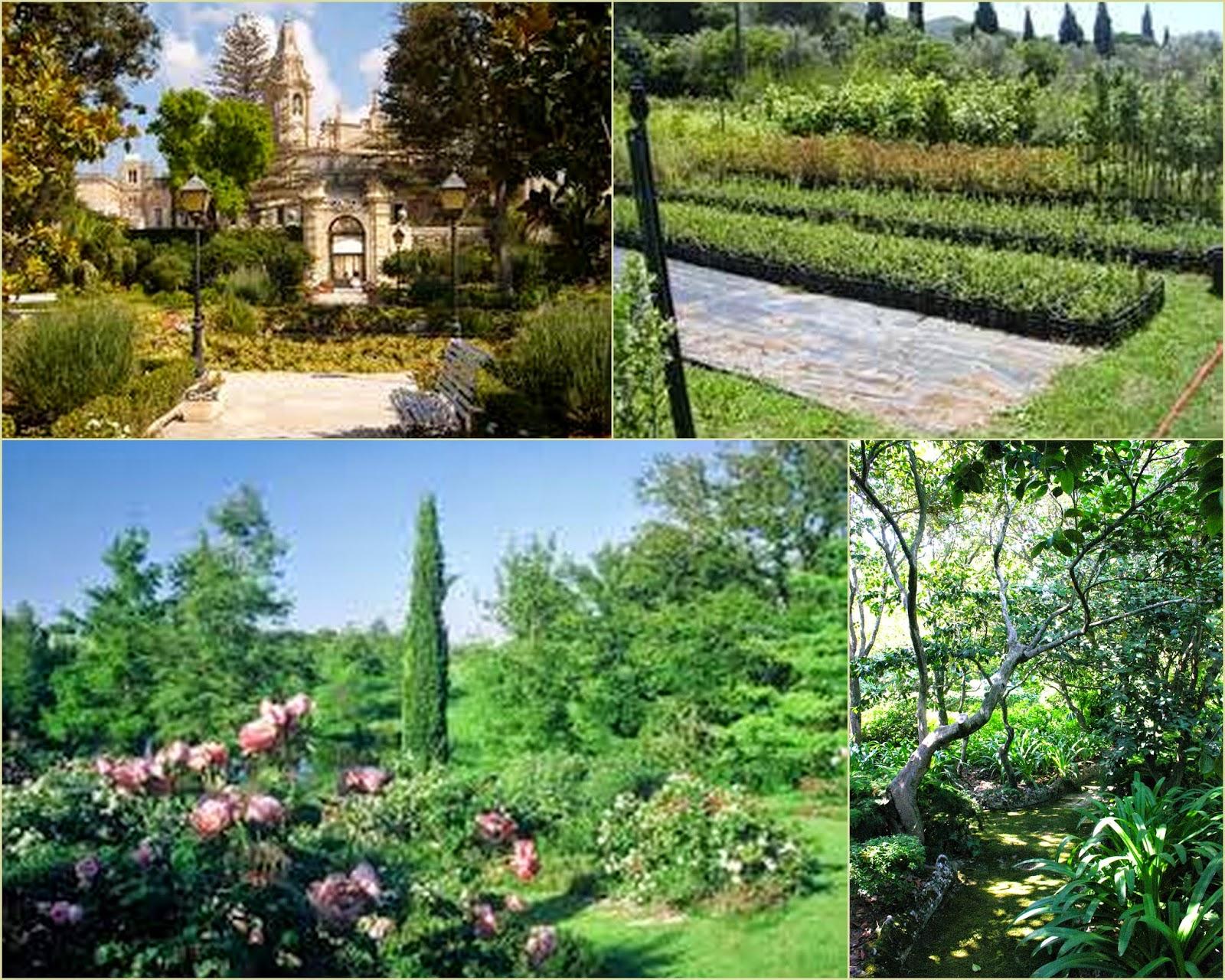 Il giardino mediterraneo con tanto sole e poca acqua for Giardino mediterraneo