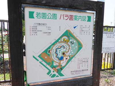 若園公園 バラ園案内図