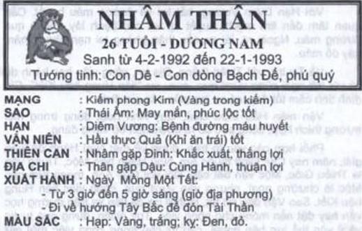 TỬ VI TUỔI NHÂM THÂN 1992 NĂM 2017