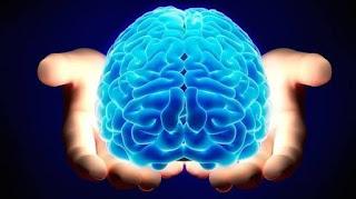 IMAJINASI | Otak Pusat Kendali Kecerdasan