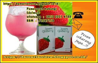 jual jovem gluberry drink, pesan gluberry drink hubungi edelweis whatsapp  :  0853 2027 4788 bbm  :  5156715D