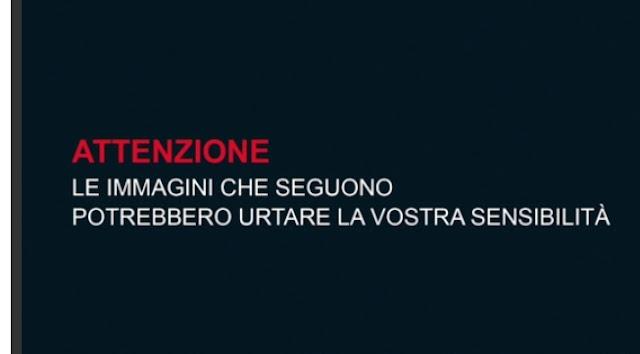 خطير بالفيديو...لحظات فرار الأطفال مذعورين من حافلة بإيطاليا أضرم فيها النار شخص