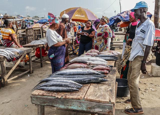 Tanji Fish Market, Gambia