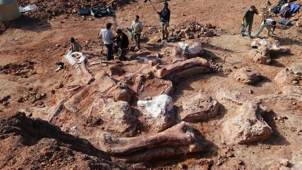 Peneliti Menggali 150 Tulang Dinosaurus