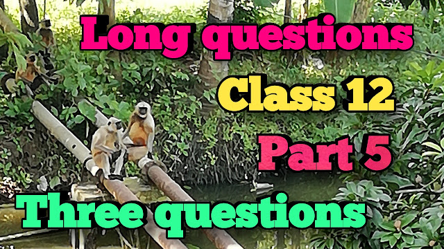 Long questions and answers from three questions