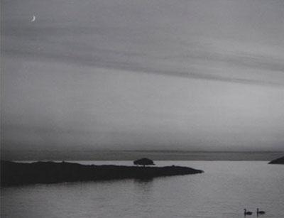 https://www.galeriecameraobscura.fr/artistes/sammallahti/galeries/gallerie_05/pages/07_jpg.html