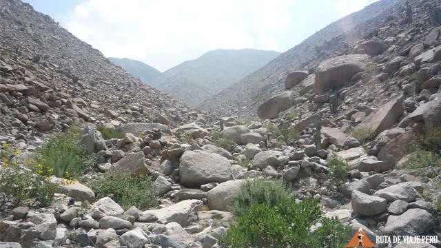 Camino entre piedras - Camino Inca Chontay California