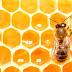 Arılar Neden Bal Yapar?