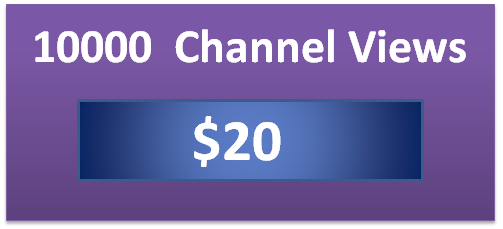 10000 twitch channel views
