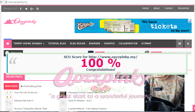 SEO Blog Opzzpinky 100%