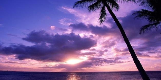 Bulutlar Rengarenk Ağaç