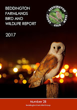 BEDDINGTON FARMLANDS BIRD AND WILDLIFE REPORT 2017