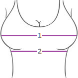 Bra Measurement Image