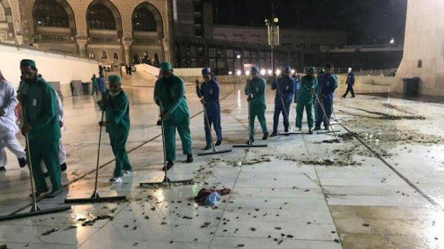 Kenapa Jangkrik dan Belalang 'Menginvasi' Makkah?